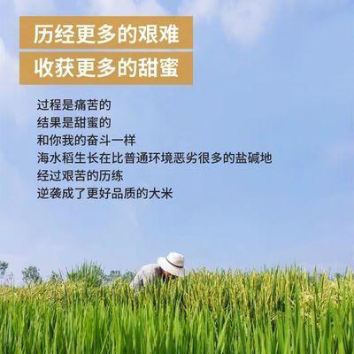 热卖东北大米5斤10斤优质小町香米特价包邮好吃不贵原生态大米分