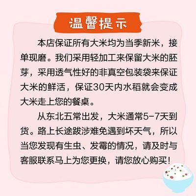 热卖10斤大米20斤大米可选【掌中禾】黑龙江小町圆粒珍珠米