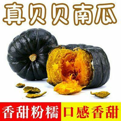 真贝贝南瓜贝贝小南瓜板栗味日本种源新鲜蔬菜宝宝辅食非板栗南瓜