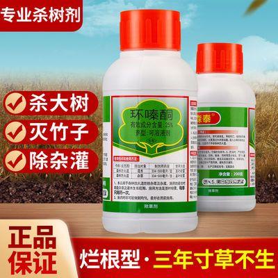 环嗪酮25% 杀大树杀竹子灌木烂根杂竹净死根注射专业灭树药杀树剂