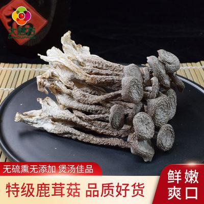 特级鹿茸菇干货无碎鹿茸菇干货鹿茸菌新鲜无硫土特产食用菌野生菌