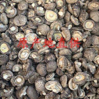 热卖小香菇金钱菇干货香菇干货250g湖北土特产特级花菇农家自产肉