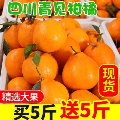 四川蒲江不知火丑橘10斤新鲜丑八怪柑橘子水果丑桔整箱新鲜水果5