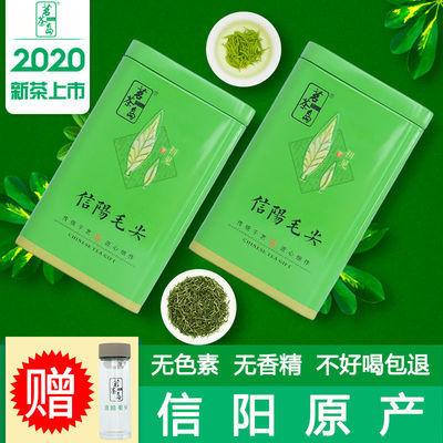 茗茶岛信阳毛尖2020新茶毛尖茶叶云雾绿茶明前春茶高山绿茶罐125g