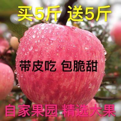 精品陕西洛川冰糖心丑苹果脆甜红富士新鲜水果3斤5斤10斤整箱批发