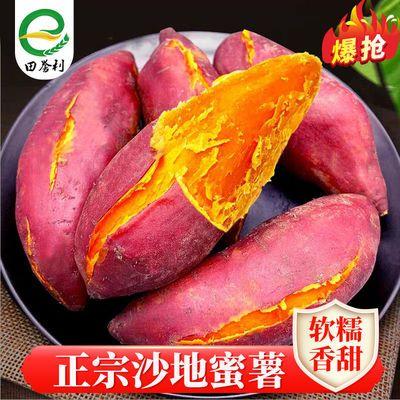 软香绵甜蜜薯红薯新鲜10斤2斤现挖沙地甘薯山芋番薯地瓜红薯批发