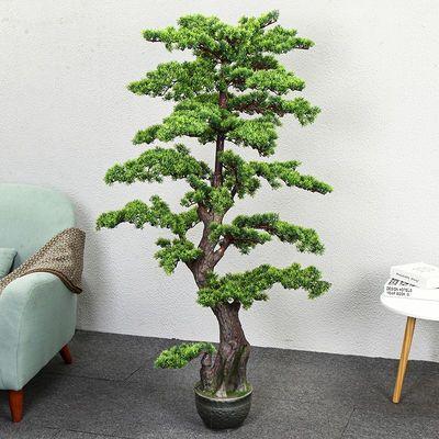 发财树 假树假花客厅装饰绿色绿植物落地绢花盆栽塑料盆景仿真树
