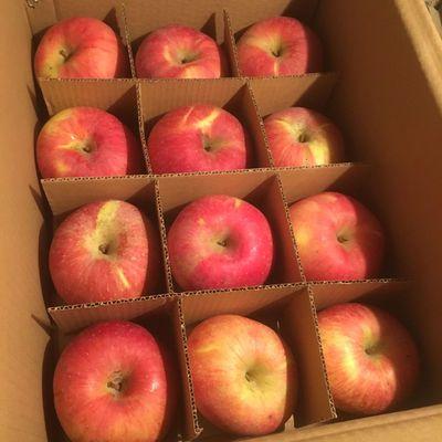 发货果头苹果一级洛川红富士12正常盒装陕西心个精品冰糖送礼礼盒