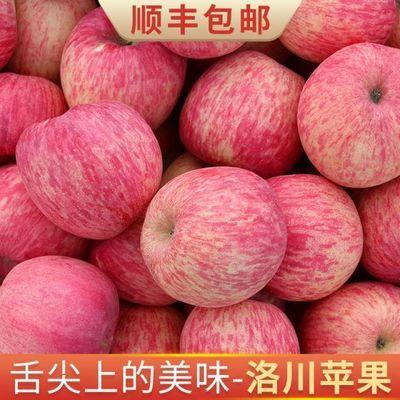 精品陕西延安洛川苹果脆甜红富士苹果10斤中大果新鲜水果整箱苹果