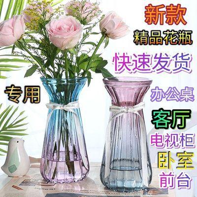 新款加厚大号花瓶玻璃透明客厅摆件水培富贵竹百合插干花陶瓷花瓶
