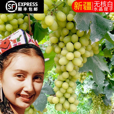 新疆新鲜葡萄吐鲁番5斤无核孕妇当季水果马奶子无籽提子顺丰包邮