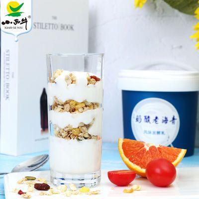 【近期新货】小西牛 青海桶装老酸奶1kg*1原味益生菌4.0g优质蛋白