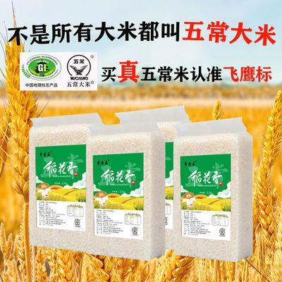 东北大米20斤五常稻花香大米长粒香大米10斤稻花香新米真空包装