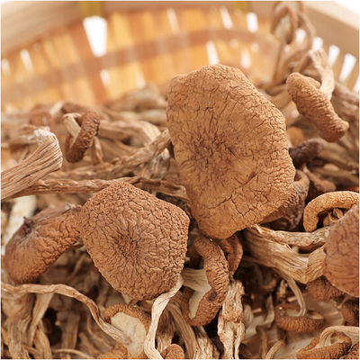热卖南北干货江西广昌土特产250g农家茶树菇特级开伞茶薪菇干货香