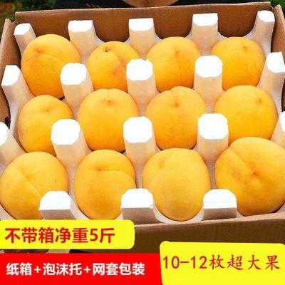 沂蒙山黄毛桃黄桃黄金水蜜桃新鲜水果毛桃黄金桃黄色毛桃纯甜桃子