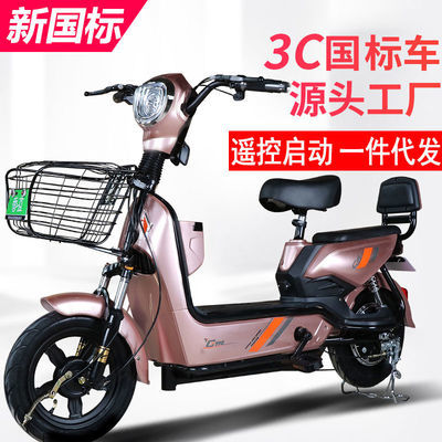 七彩飞扬新国标电动车带脚蹬48V成人电动自行车金鹰款长跑王