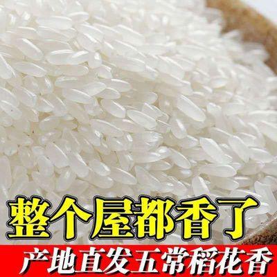 五常稻花香米20斤装【新米】19年新大米正宗东北长粒米稻香米10斤