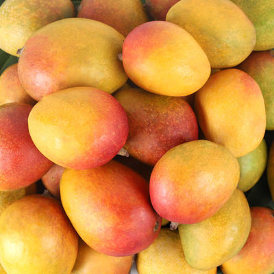 吉禄芒当季新鲜热带甜水果整箱装批发苹果芒吉尔芒大芒果爱文芒