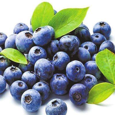 【防伪可查120片】蓝莓叶黄素酯片成人儿童青少年正品非软胶囊