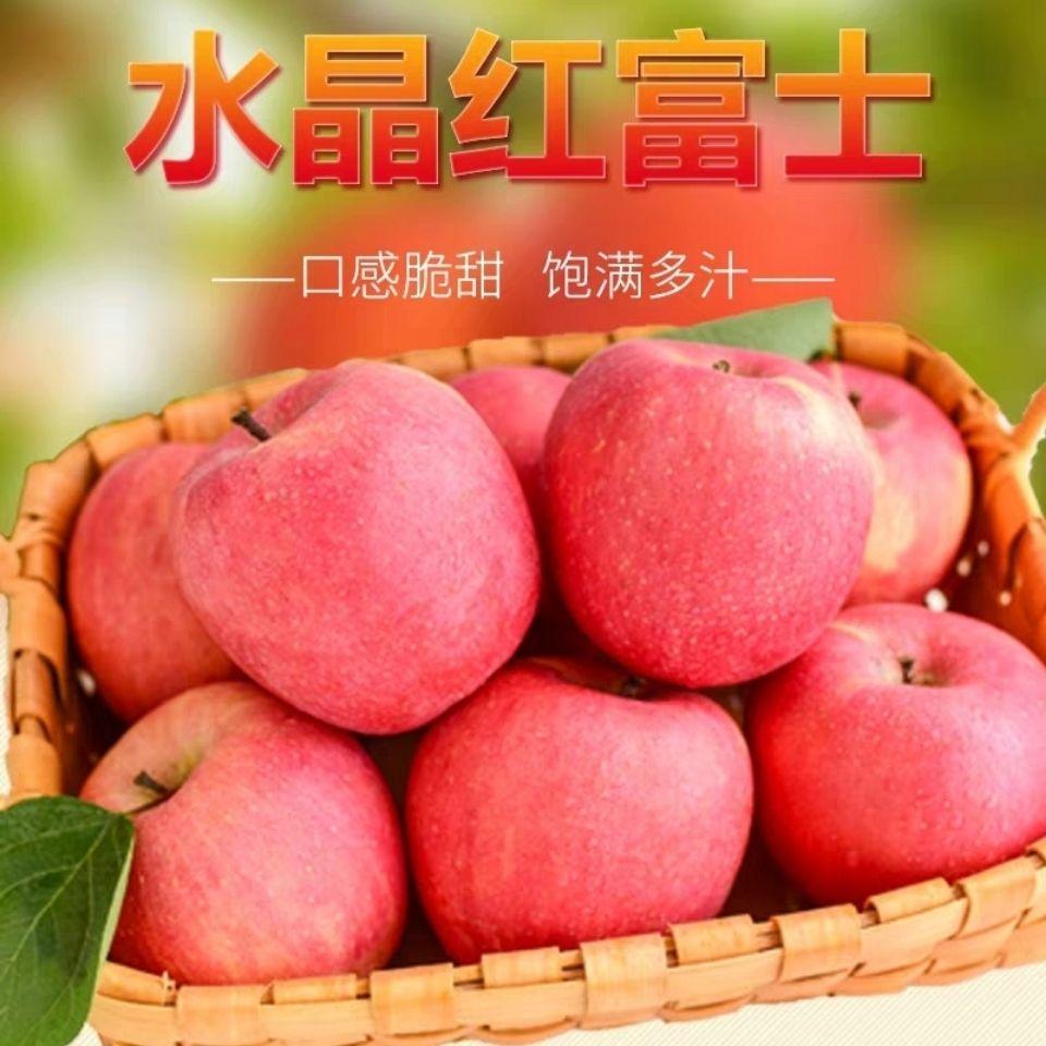 烟台红富士苹果应季水果整箱批发5/10斤脆甜多汁【坏果包赔】
