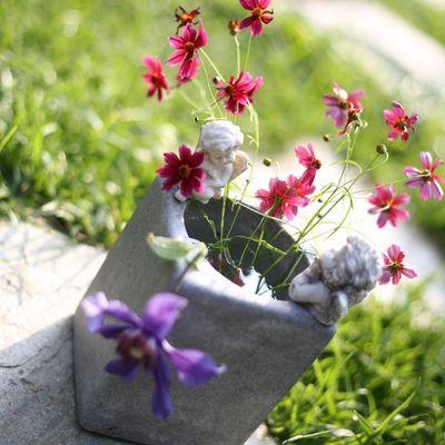 创意双天使招财水培植物花盆 铜钱草 睡莲等植物室内水养吸甲醛