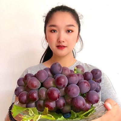 现摘巨峰葡萄新鲜水果包邮儿童孕妇应季水果酸甜葡萄2/10斤箱装