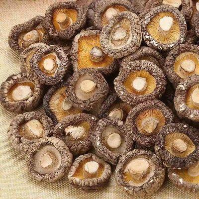 伏牛山香菇干货特级蘑菇批发椴木香菇花菇冬菇剪脚野生农家土特产