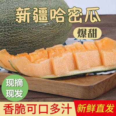 正宗新疆哈密瓜现摘现发应季水果新鲜甜脆多汁孕妇专用皮薄脆甜