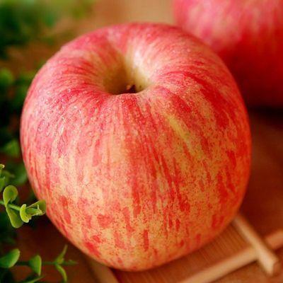 山东红富士新鲜苹果当季现摘水果整箱批发包邮10/5/3斤坏果包赔