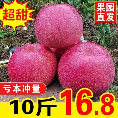 【限时特价】苹果水果10斤整箱批发新鲜当季陕西秦冠甜粉面丑苹果