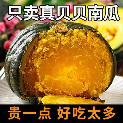真贝贝南瓜板栗味日本进口种源小南瓜栗面迷你宝宝辅食蔬菜包邮