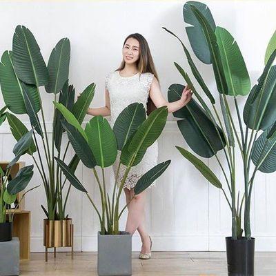 北欧仿真植物旅人蕉假绿植盆栽大型客厅摆设室内装饰龟背叶