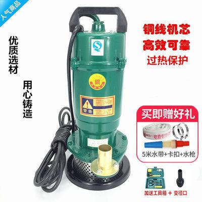 370W750W单相家用电潜水泵1寸220V抽水机井用农用户外浇灌清水泵