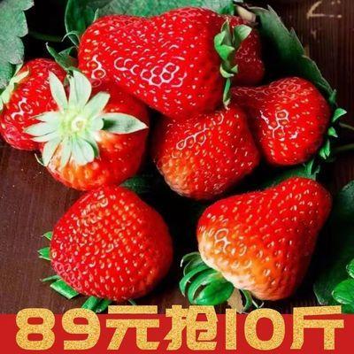 现摘云南新鲜酸甜草莓2斤包邮新鲜孕妇水果非丹东99奶油草莓1斤