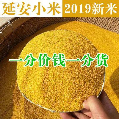 2019新米黄小米5斤农家自产陕北延安小米杂粮2斤特产小米粥粗粮