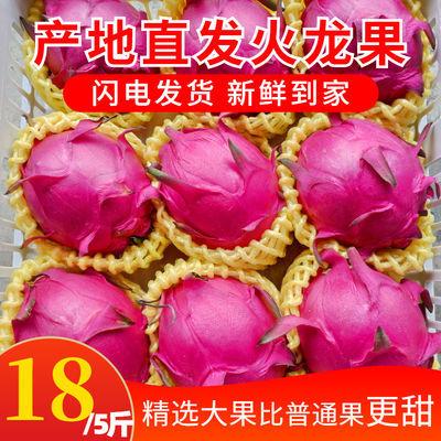 【品牌特价】红心火龙果新鲜水果海南京都一号蜜宝应季水果非越南