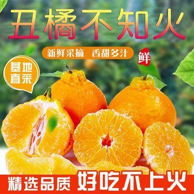 【品质精选】四川丑橘不知火丑八怪橘子桔子当季新鲜水果应季丑橘