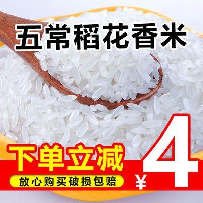 正宗五常稻花香米10斤特价东北大米20斤装批发五常大米长粒香新米