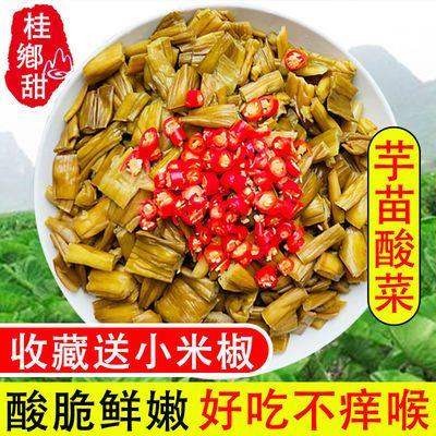 芋苗酸3斤芋荷新鲜广西特产芋苗干梗酸蔬菜1/2斤酸嫩脆爽送小米椒