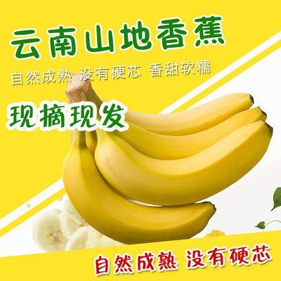 云南自然熟绿香蕉水果山地焦新鲜整箱批发应急水果9-10斤装