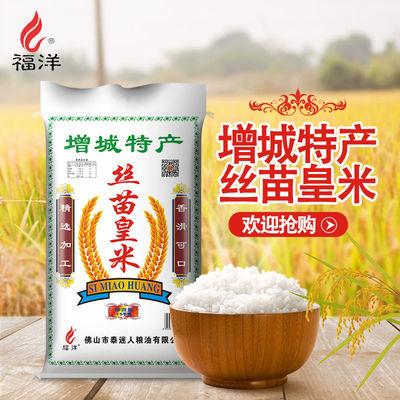 2020年新米煲仔饭专用米油粘米长粒香米30斤粳米增城丝苗大米批发