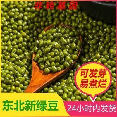 【热卖】东北绿豆精小绿豆子绿豆水绿豆芽包邮批发