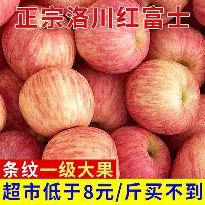 新品陕西精品洛川红富士苹果正宗脆甜当季新鲜水果3斤5斤10斤整箱