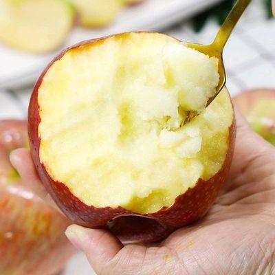 陕西秦冠苹果10斤装批发新鲜当季水果爆甜粉面老树丑苹果非红富士