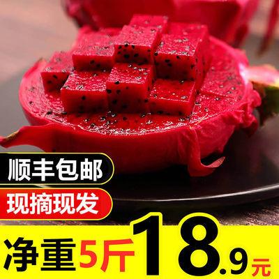 【顺丰包邮 开业特惠 】云南红心火龙果超甜火龙果京都1号火龙果