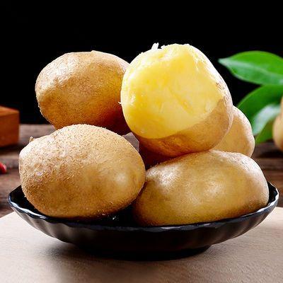 贵州土豆 六盘水洋芋 农家自种土豆 黄心洋芋 马铃薯多规格包邮