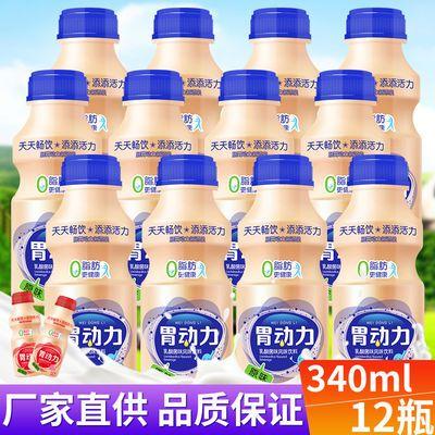 原味胃动力饮品12瓶乳酸菌340ml早餐益生元酸奶牛奶饮料整箱包邮