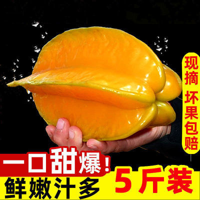 40101/【送酸梅粉】福建杨桃降火水果孕妇酸甜杨桃当季水果3/5斤批发