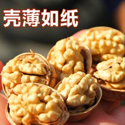 【精品好货】新疆核桃185纸皮核桃薄皮核桃孕妇零食坚果批发