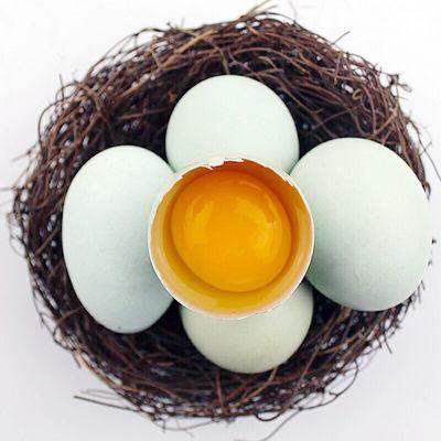 农村放养土乌鸡蛋30枚贵州特产乡下正宗新鲜林下虫草散养鸡绿皮蛋